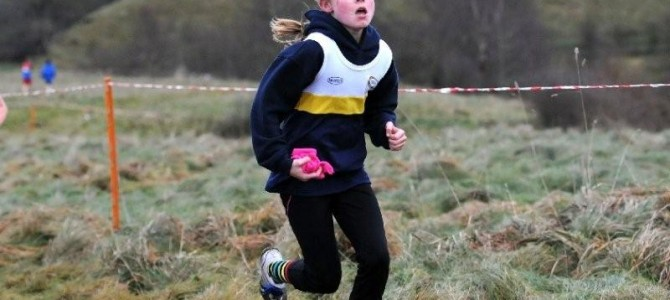 Club Success in the North Staffs Cross Country League