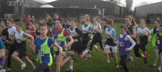 2013 Cheshire Cross Country Championships