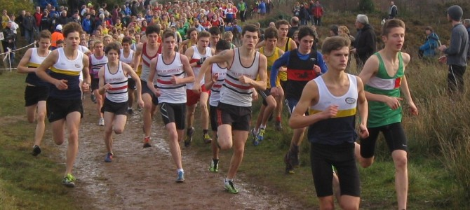 Cross Country at Park Hall